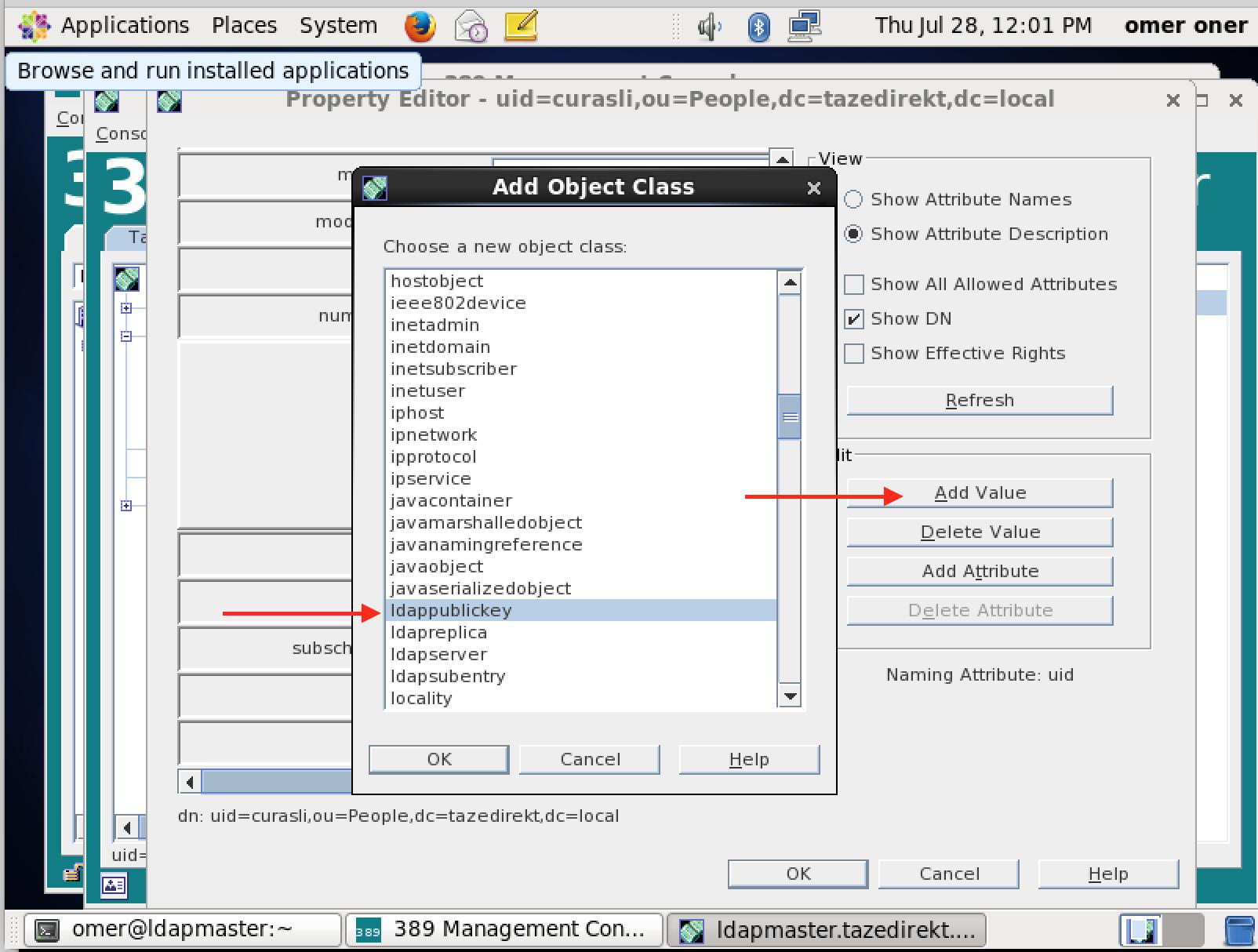 389 Directory Server ve Client Kurulumu ve Yapılandırılması